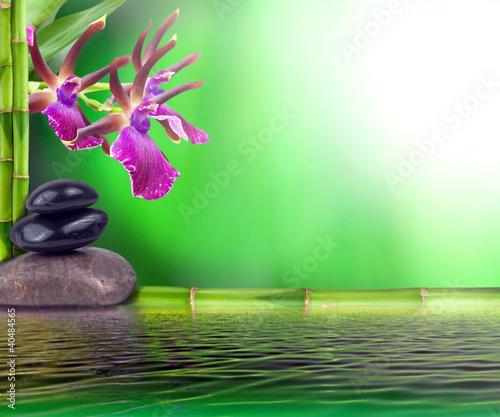 Doppelrollo mit Motiv - Zen Stillleben (von Visions-AD)