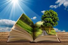 Libro Con Albero