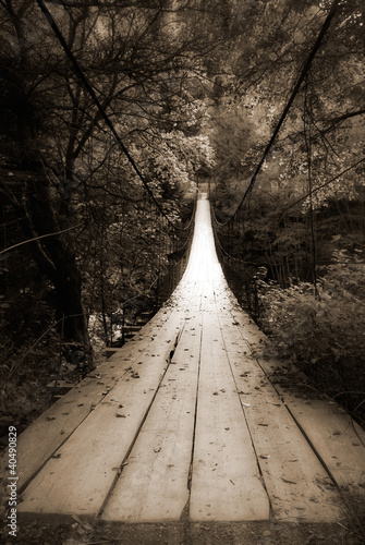 suspension bridge - 40490829