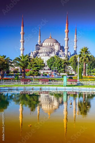 Tuinposter Turkije Blue Mosque in Istanbul - Turkey