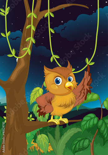 Aluminium Prints Forest animals night owl