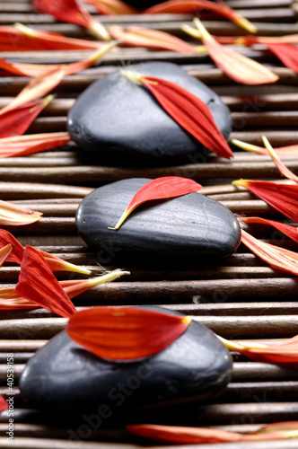 In de dag Spa Spa composition of stones and red petals
