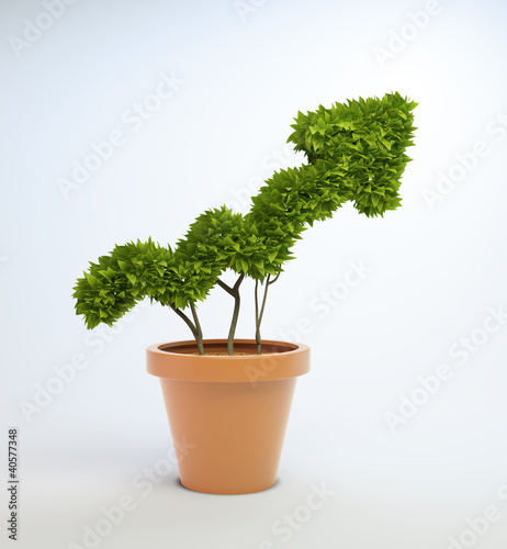 Fotografia  Potplant shaped like a graph