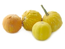 Small Ornamental Yellow Gourds