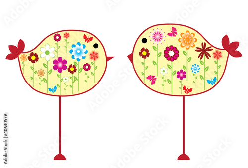 vector floral birds