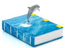 Magic Sea Book With Jumping Dolphin