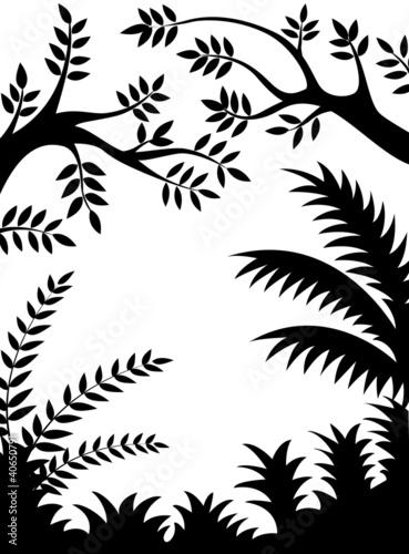 sylwetka-drzewa