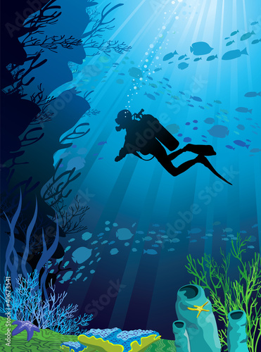 Recess Fitting Submarine Beautiful coral reef and silhouettes of diver