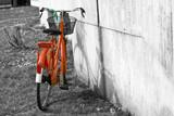 Starożytny rower - 40703974