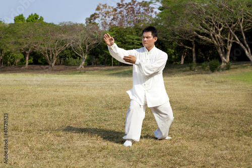 man in a kung fu position - 40728523