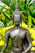 Buddha statue with yellow flower is background