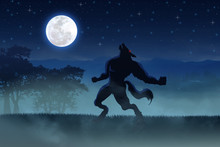 Illustration Of A Werewolf Dur...