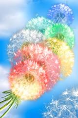 Obraz na Szkle Dmuchawce Dandelion flowers on blue sky background