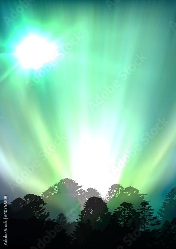 Valokuva  aurora