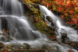 waterfall in beech forest
