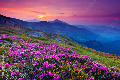 mountain landscape - 40792259