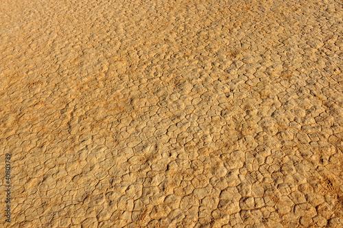 Deurstickers Droogte Cracks in desert sand, Wadi Rum