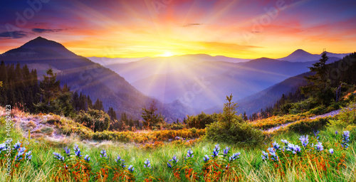 mountain landscape - 40852423