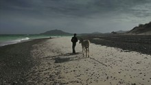Child With Donkey In The Beach