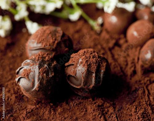 Foto op Canvas Klaprozen chocolate
