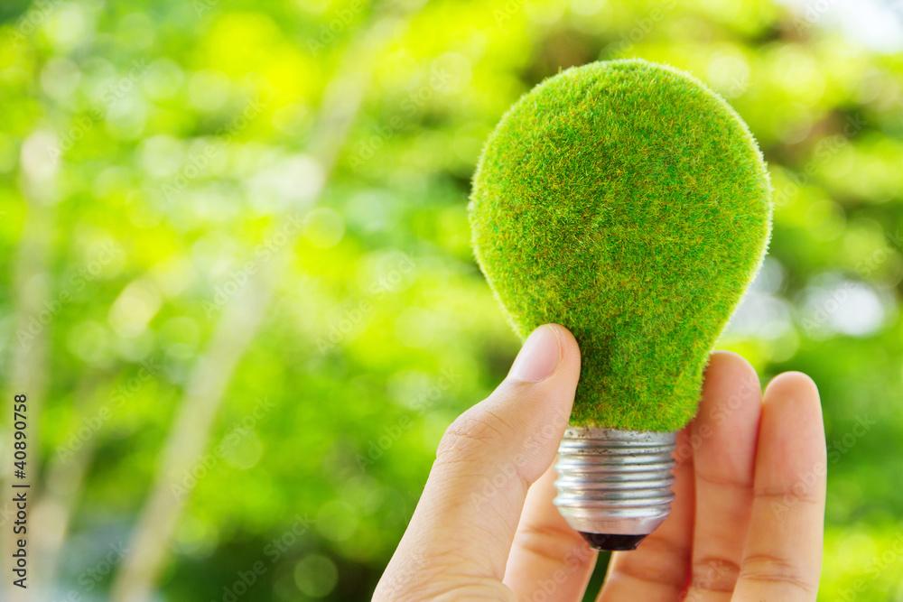 Fototapeta hand holding eco light bulb energy concept