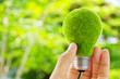 hand holding eco light bulb energy concept