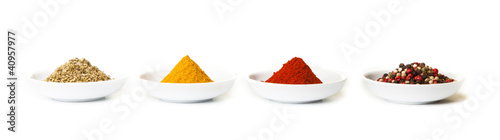Recess Fitting Spices Colorful spices in white pods isolated on white