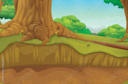 Aluminium Prints Forest animals Tree trunk forest scene
