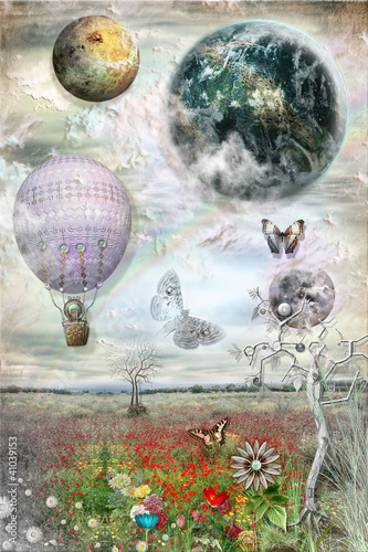 Zastosowanie fototapet balon-i-motyle