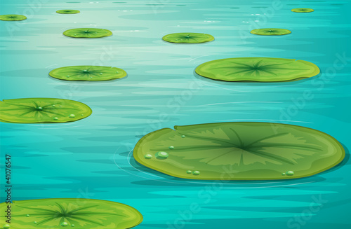 Calm pond scene Canvas-taulu