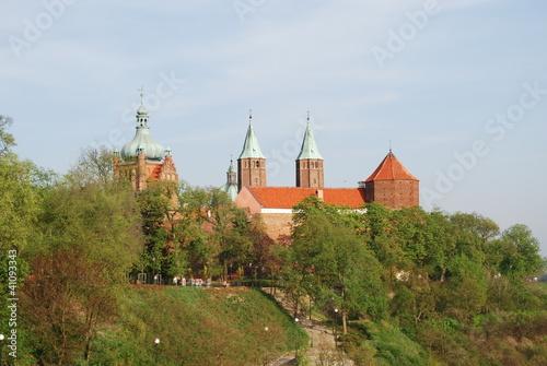 Vászonkép Wzgórze Tumskie, Płock