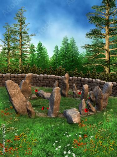 Krąg kamieni na łące z wiosennymi kwiatami - 41120765