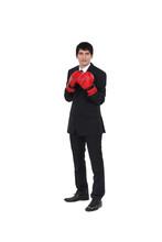 Executive Boxing Gloves