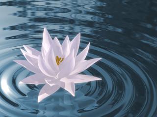 Panel Szklany Egzotyczne Floating waterlily