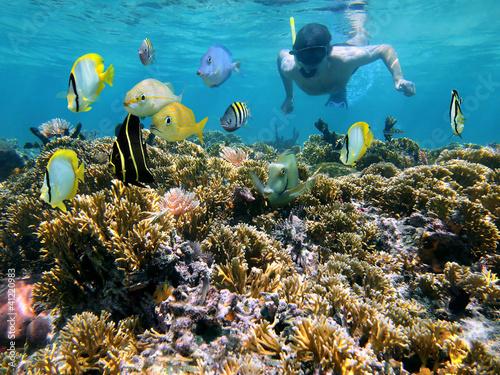 Staande foto Koraalriffen Coral reef and snorkeler