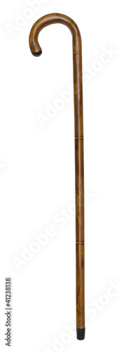 Fototapeta Walking Stick Isolated obraz