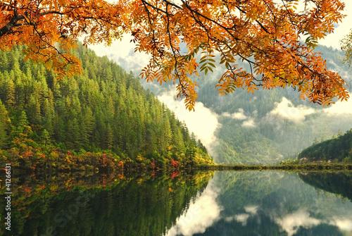 Tuinposter China autumn in China