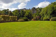 Parco In Primavera
