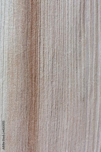 Fototapeta premium włókna drzewne