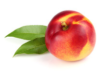 One Ripe Nectarine With Leaves