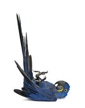 Portrait Of Hyacinth Macaw, An...