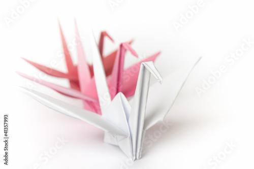 trzy-queuing-papierowego-ptaka-na-bialym-tle