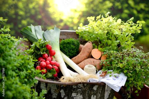 La pose en embrasure Magasin alimentation Gemüseernte
