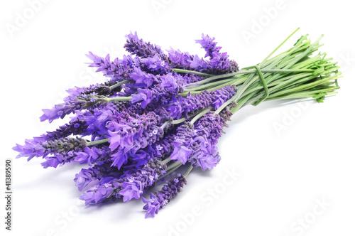 Stickers pour porte Lavande lavender