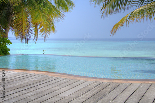 Motiv-Rollo Basic - Luxury tropical Infinity Pool on the Maldives (von XtravaganT)