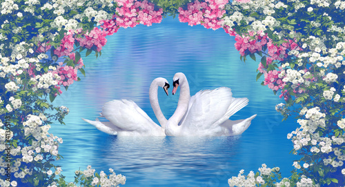 Photo sur Toile Cygne Two swans framed with blooming flowers