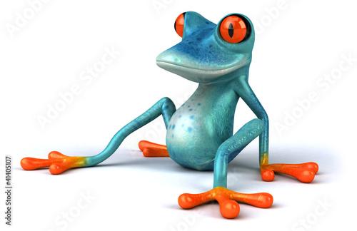 Valokuva Blue frog