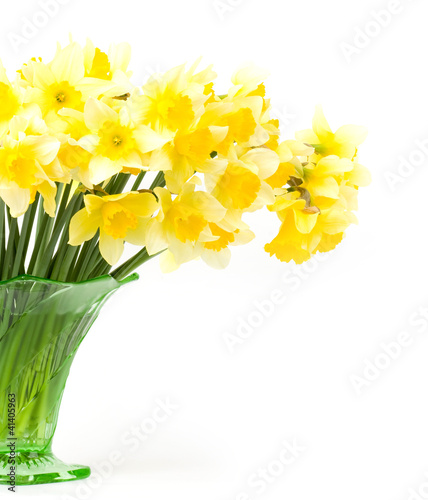 Narcissus Beautiful spring yellow flowers in a glass vase