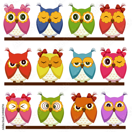 Stickers pour portes Hibou Set of 12 owls with different emotions