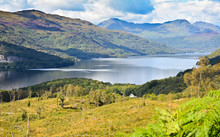 Loch Lomond, Scotland From The...